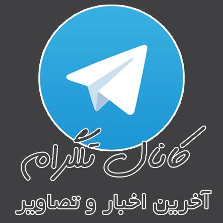 عضو کانل تلگرام نیکانو شوید