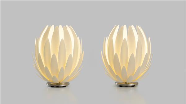 پرینت سه بعدی لامپ لیلی در ۱۴ سال پیش ساخته شد