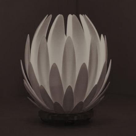 پرینت-سه-بعدی-لامپ-لیلی