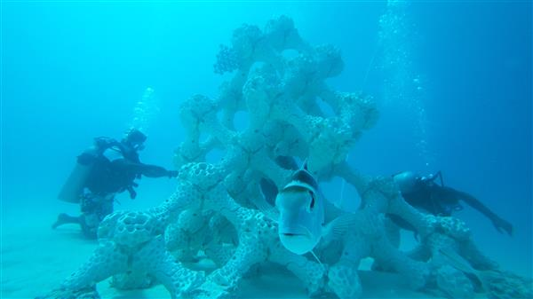 خدمات پرینت سه بعدی به کمک بزرگترین صخره دریایی چاپ شده در مالدیو 1